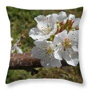 Cherry Tree Blossom White Flower Throw Pillow