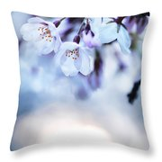Cherry Tree Blossoms In Morning Sunlight Throw Pillow