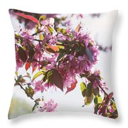 Cherry Tree Flowers Throw Pillow