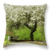 Cherry Tree In Full Bloom Throw Pillow