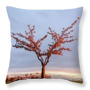 Cherry Tree Standing Alone In A Park, Lit By The Light  Throw Pillow