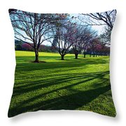 Cherry Trees In Bloom Throw Pillow