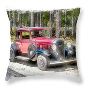 Cherry Wine Throw Pillow