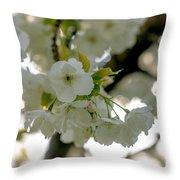 Cherryblossom Flowers 4 Throw Pillow