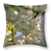 Cherryblossom In Focus Throw Pillow