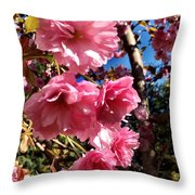 Cherryblossoms Perspective  Throw Pillow