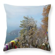 Chersky Stone View Throw Pillow