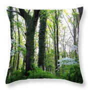 Chesapeake Oldgrowth Forest Throw Pillow