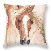 Chestnut Arabian Horse 2016 08 02 Throw Pillow