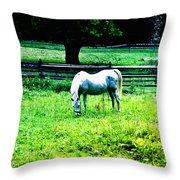 Chestnut Hill Horse Throw Pillow