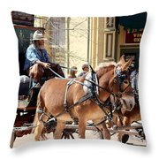 Chestnut Horses Pulling Carriage Throw Pillow