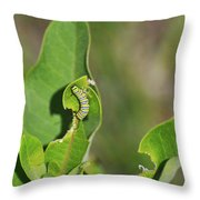 Chewing My Way To Adulthood Throw Pillow