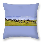 Cheyenne Cattle Roundup Throw Pillow