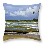 Chichirivihe Bay Throw Pillow