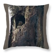 Chick Waiting For Food Throw Pillow