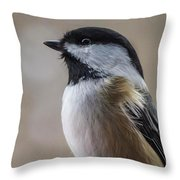 Chickadee Close Up Throw Pillow