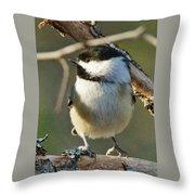 Chickadee Enjoying The Sun Throw Pillow