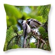 Chickadee Feeding Time Throw Pillow