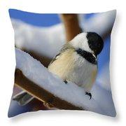 Chickadee... Throw Pillow