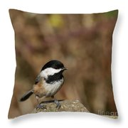 Chickadee On Wooden Fence Throw Pillow