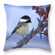 Chickadee With Craquelure Throw Pillow