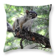 Chickaree On The Tree Throw Pillow