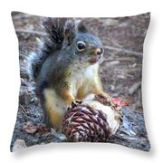 Chickaree Stripping A Pine Cone - John Muir Trail Throw Pillow