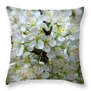 Chickasaw Plum Blooms Throw Pillow