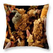 Chicken Droppings Throw Pillow