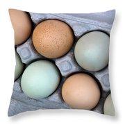 Chicken Eggs In Carton Throw Pillow