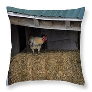 Chicken In Barn Throw Pillow