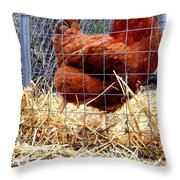 Chicken In The Straw Throw Pillow