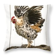 Chickens In Bird In Hand 2 Throw Pillow