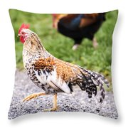 Chickens In Bird In Hand Throw Pillow