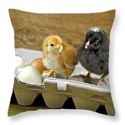 Chicks And Eggs Throw Pillow