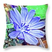 Chicory On Trail To North Beach Park In Ottawa County, Michigan  Throw Pillow