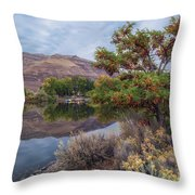 Chief Timothy Reflections Throw Pillow
