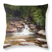 Cooling Creek Throw Pillow by Melissa Herrin