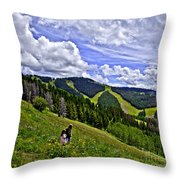 Children On Vail Mountain Throw Pillow