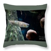 Children Watch Silver Arowana Fish Throw Pillow