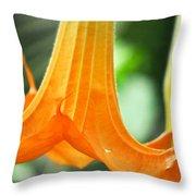 Children's Garden Angel's Trumpet Throw Pillow