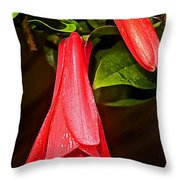 Chile's National Flower Copihue At Auto Museum In Moncopulli-chile  Throw Pillow