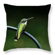 Chillaxin Throw Pillow