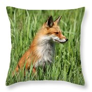 Chillin Vixen  Throw Pillow