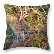 Chilling Iguana Throw Pillow