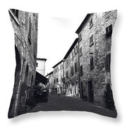 Chilling Out In Tuscany Throw Pillow
