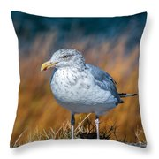 Chilling Seagull Throw Pillow