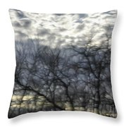 Chilly Morning Throw Pillow