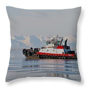 Chilly Waters Throw Pillow