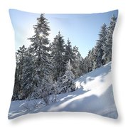 Chimney Gulch Trail In Winter Throw Pillow